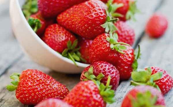 fresas ecológicas
