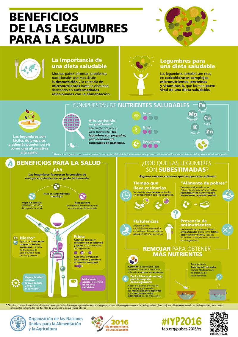 Infografía de la FAO sobre los beneficios de las legumbres.
