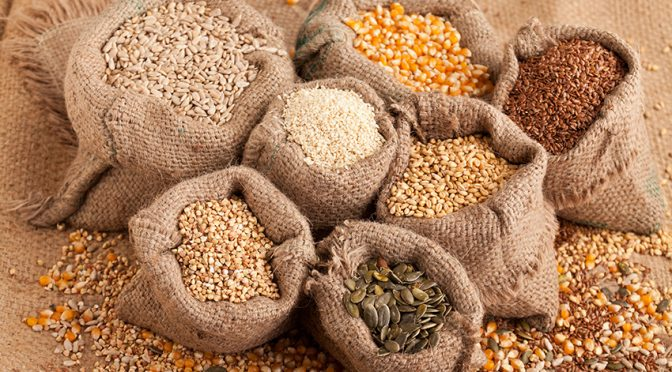 Recetas: Las semillas y cómo incluirlas en tus platos