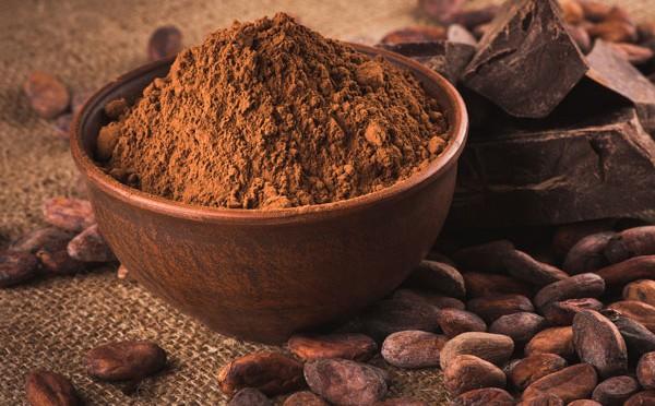 El cacao ecológico