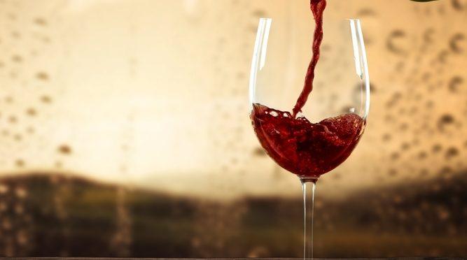 El vino ecológico y sus grandes beneficios para la salud