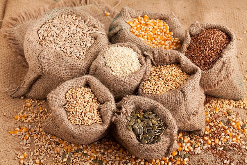 Cómo incluir las semillas en nuestros platos